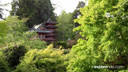 Jardín del Té Japonés